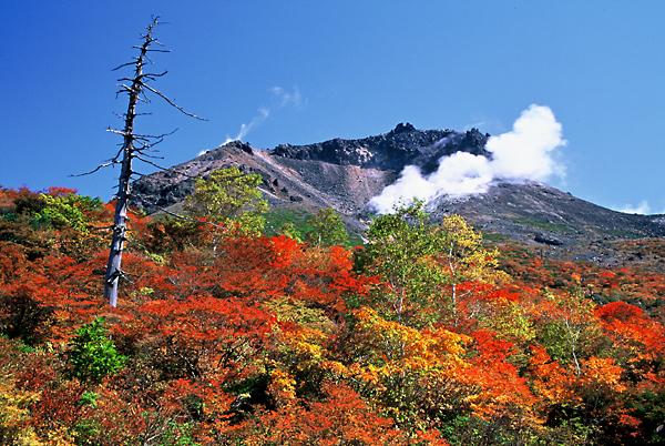 茶臼岳の紅葉/那須町観光協会